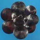 B651 Sailors Valentine Craft shells Angaria shell operculum, 12 pcs