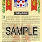 LALLY - IRISH - Armorial Name History - Coat of Arms - Family Crest GIFT! 8.5x11