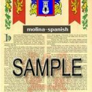 MOLINA - SPANISH - Armorial Name History - Coat of Arms - Family Crest GIFT! 8.5x11