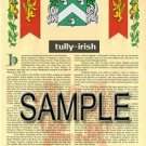 TULLY - IRISH - Armorial Name History - Coat of Arms - Family Crest GIFT! 8.5x11