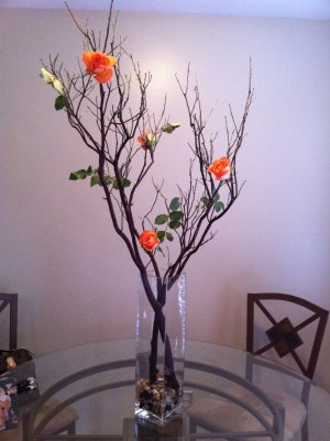 "33""-36"" Natural Red Manzanita Branches 10 pc."