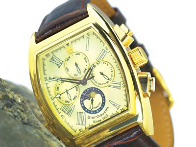 Steinhausen Ulrich Automatic Calendar Watch Gold # TW 393 G