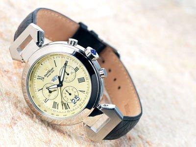 Steinhausen Swiss Design Watch (Silver) # TW 482 S