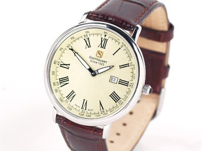 Steinhausen Dunn Horitzon Watch Silver Leatherband # TW 493 S