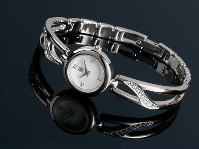 Steinhausen Ladies Watch (Silver) # TW 553 S