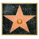 Customizable Walk of Fame Star - 3341