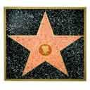 Customizable Walk of Fame Star - 3341