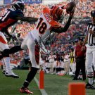 * AJ GREEN SIGNED AUTOGRAPHED PHOTO RP 8X10 CINCINNATI BENGALS