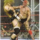 RIC FLAIR TRIPLE H SIGNED PHOTO 8X10 RP AUTOGRAPHED WWE WRESTLING CAGE MATCH