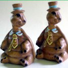 Turtles Pottery Salt & Pepper Shakers