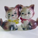 Cats With Faces Salt & Pepper Shakers