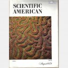 SCIENTIFIC AMERICAN August 1979 Magazine Hellman Mathematics Public Key Cryptography Tokamak fusion