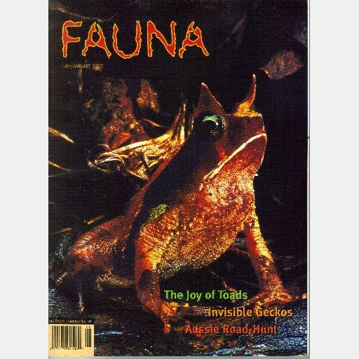 FAUNA August 2001 Volume 2 Number 4 July Magazine TOADS Leaftail Geckos Seaturtles