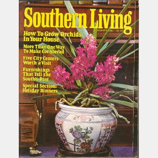 SOUTHERN LIVING November 1981 Cornbread Orchids Holiday Dinners John Maxwell William Faulkner