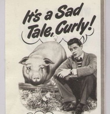 COLGATE Dental Cream '40s PRINT AD toothpaste - man confides in pig - vintage advertisement 1948