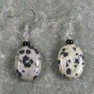 Dalmatian Jasper Sterling Silver Earrings
