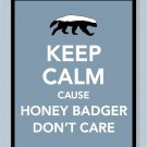 Keep Calm Cause Honey Badger Don't Care Print