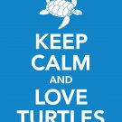 Keep Calm and Love Turtles Print