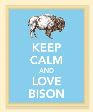 Keep Calm and Love Bison Print