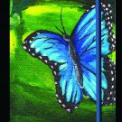 Blue Butterfly