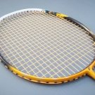 FLEET ARMORACE 900 AND APACS FINAPI 88 BADMINTON RACKET