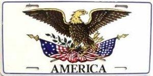 AMERICA  / AUTOMOTIVE LICENSE PLATE