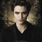 NEW DISCO TWILIGHT II - EDWARD / TREES  24 X 36  POSTER