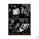 NEW RED HOT CHILI PEPPERS -  LIVE 24 X 36 MUSIC POSTER