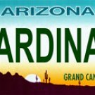 CARDINALS Arizona Novelty State Background Metal License Plate Tag Sign