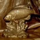 Brass Coy (Fish)