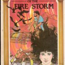 Day of the Fire Storm by Susan B Hillard