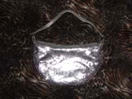 Metallic Silver Aluminum Lame Purse