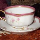 Frank Haviland Turn of the Century Teacup & Saucer
