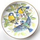Tirschenreuth Blue Titmouse WWF World Wildlife Fund porcelain plate 1986