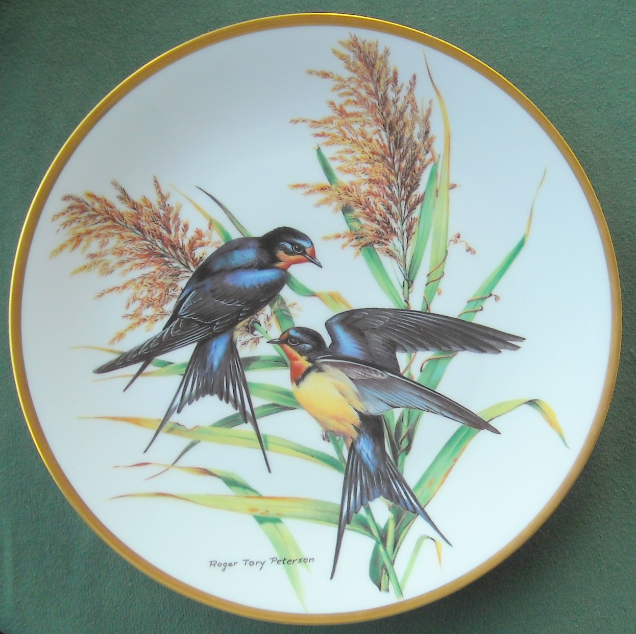 Roger Tory Peterson Barn Swallow Georges Boyer Fine