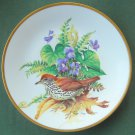 Roger Tory Peterson Wood Thrush Georges Boyer fine porcelain Limoges plate 1981