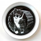 Hello World Droguett Kittens World Royal Cornwall 1979 Porcelain Plate