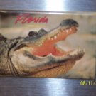 176 FLORIDA CROCK REFRIGERATOR MAGNET ALLIGATOR
