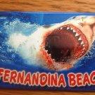 655266 FERNANDINA BEACH SHARK REFRIGERATOR MAGNET