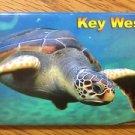 655210 KEY WEST TURTLE REFRIGERATOR MAGNET