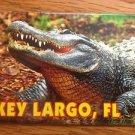 655193 FLORIDA KEY LARGO ALLIGATOR REFRIGERATOR MAGNET