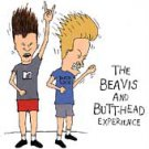 Various - Beavis and Butt-Head Experience (CD 1993) 24HR POST