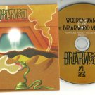 Wooden Wand  - Briarwood  -OFFICIAL ALBUM PROMO-  (CD 2011) 24HR POST