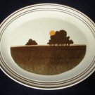 Royal Doulton LS 1031 Prairie Serving Platter