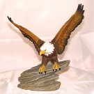 AMERICAN BALD EAGLE on ROCK - Porcelain