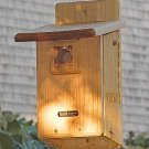 Bird House for Bluebirds or Tree Swallows