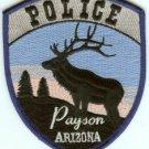 Payson Arizona Police Patch