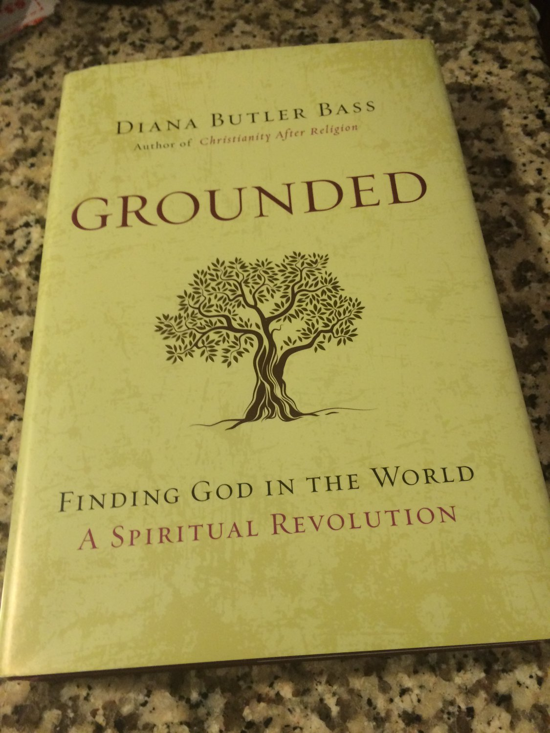 Grounded : Finding God in the World - A Spiritual Revolution by Diana Butler Bass (2015, Hardcover)