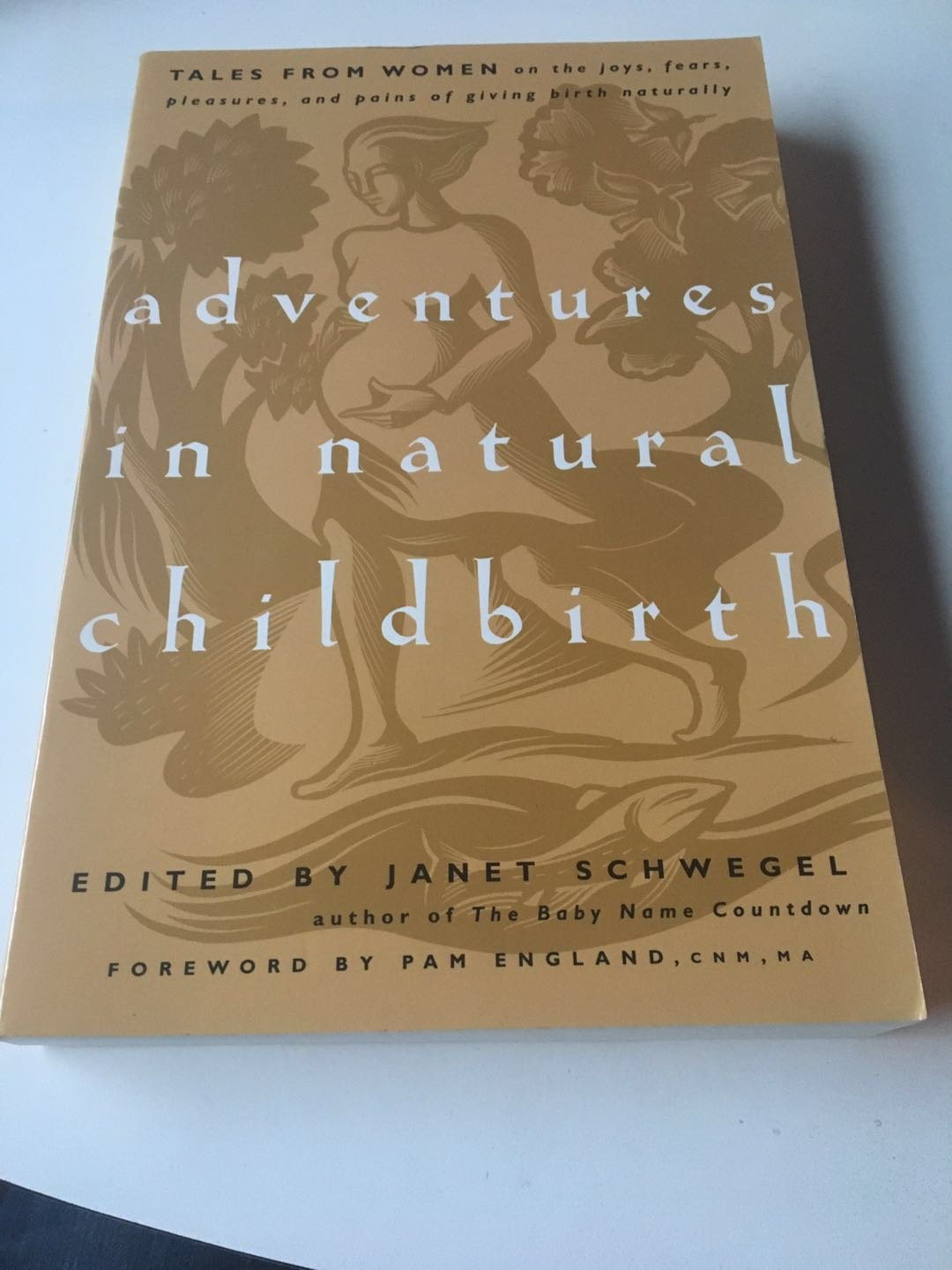 Adventures in Natural Childbirth: Tales from Women on the Joys, Fears... 2005 by Schwegel & England