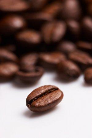 Coffee / Cafe